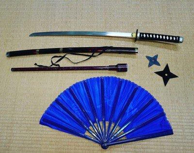 1グループ限定 目的に応じて学べる「桜島忍者体験(武器術体験)」