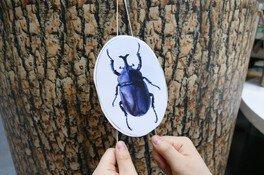 わくわく科学工作「のぼる昆虫おもちゃ」