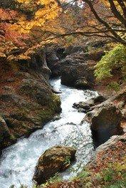 【紅葉・見ごろ】真瀬渓谷