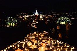 茨城県植物園 ナイトガーデン