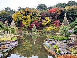 文京区立肥後細川庭園の紅葉