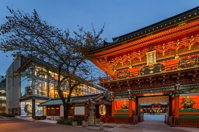 神田神社の桜