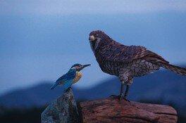 茨城県植物園 陶の鳥と器