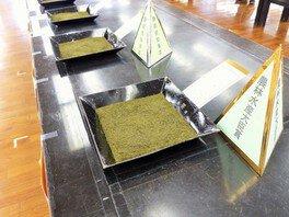 静岡県茶品評会出品茶入札販売会へ潜入ツアー