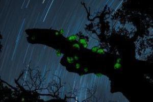 第6回ふくしま星・月の風景フォトコンテスト作品展