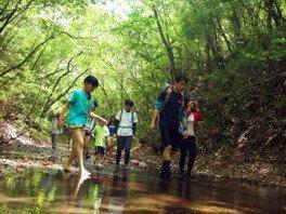 新緑の大谷渓谷ツアー