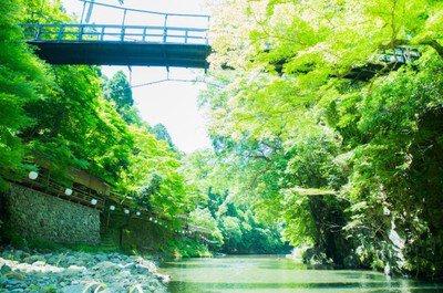 京都・三尾探訪ウォーキング(高雄・槇尾・栂尾)
