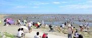 【臨時休園】葛西海浜公園の潮干狩り