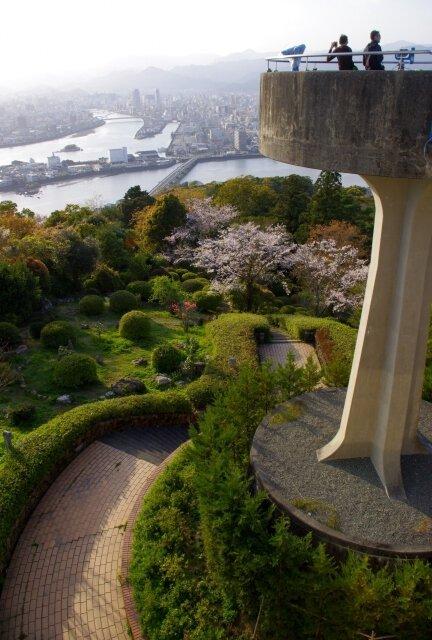 【桜・見ごろ】五台山公園