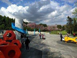 【一部臨時休園】モエレ沼公園サクラの森の桜