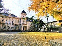 旧岩崎邸庭園の紅葉