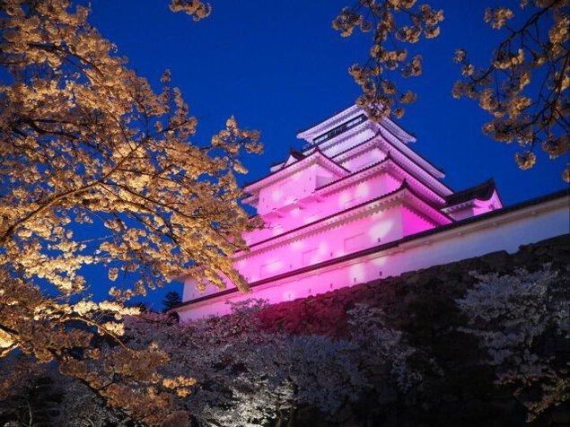 鶴ヶ城公園ライトアップ<中止となりました>