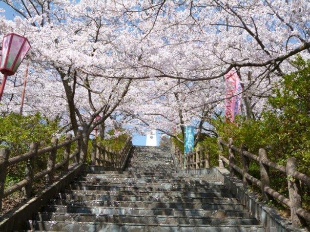第40回 富士川町大法師さくら祭り
