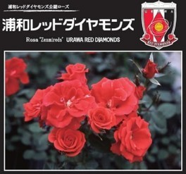 """がんばれ!浦和レッドダイヤモンズ """"レッズローズ""""植樹イベント"""