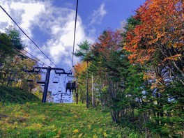 草津温泉スキー場 天狗山周辺の紅葉