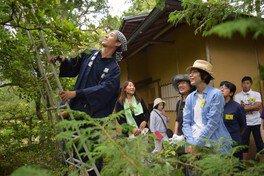 庭師と学ぶ フォスタリング・スタディーズ  第3回 コウヨウザン、ヒサカキ、ユキヤナギ