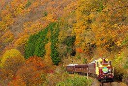 わたらせ渓谷鐵道の紅葉