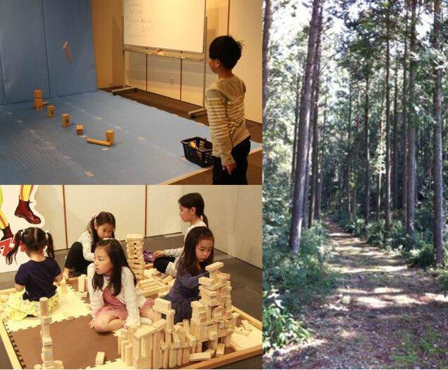 三重の森で遊ぼう