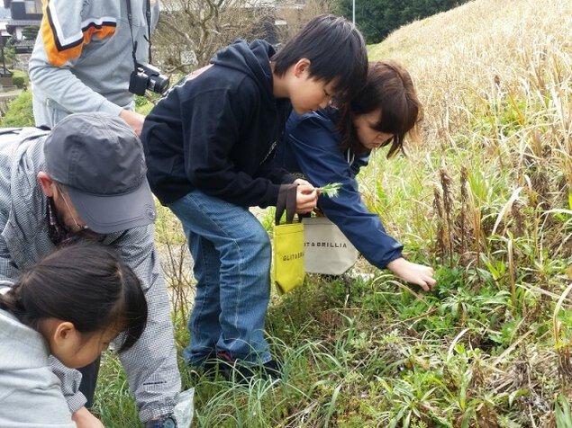 春の恵み 山菜摘みECOツアー