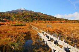 【紅葉・見ごろ】鳥海山
