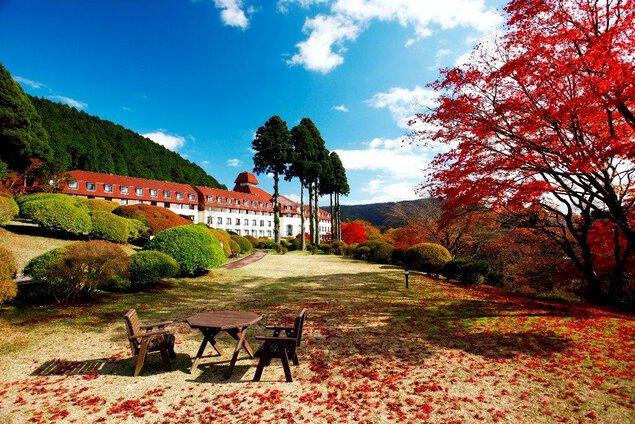 小田急 山のホテルの紅葉