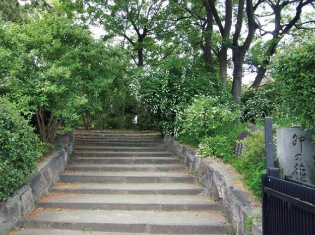 卯の花苑 一般公開