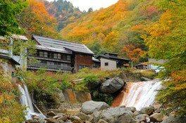 滑川温泉付近の紅葉