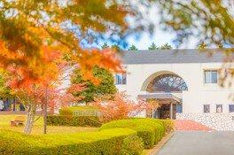 箱根レイクホテル周辺の紅葉