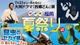 NHK福岡 夏祭り-花火!お笑い!昆虫!ドッカ~ン-