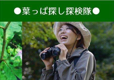 茶臼山高原 山の日特別企画 葉っぱ探し探検隊