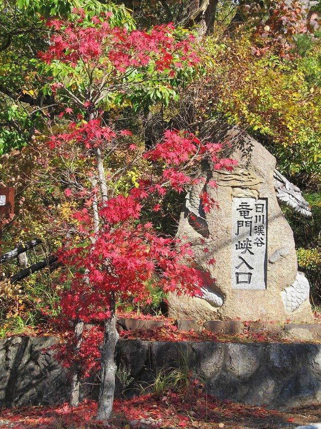 竜門峡の紅葉