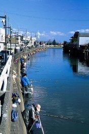 第37回 水郷おみがわふな釣り大会
