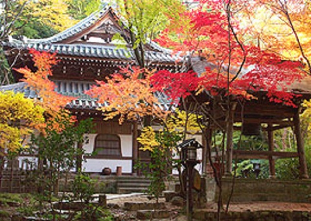 東山(長楽寺)の紅葉