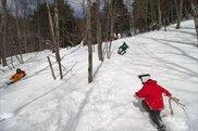 スノーシューで雪の森へ!2019