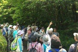 自然観察会「森のいきもの観察会」