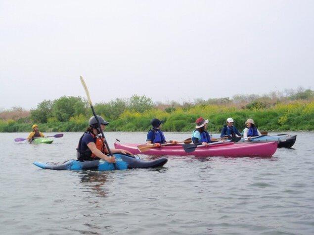「菜の花&利根川探検カヤッククルーズ」 埼玉ぐんま利根川中流域・自然体験ツアー