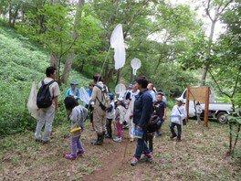昆虫観察会(7月)