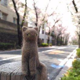 猫毛人形の教室@キトゥンカンパニー