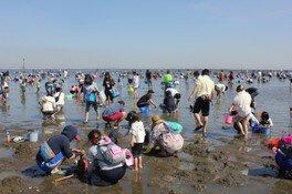 富津海岸潮干狩り場
