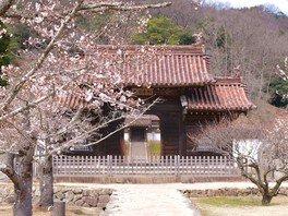 【花・見ごろ】旧閑谷学校の椿・梅