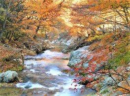 三依渓流の紅葉