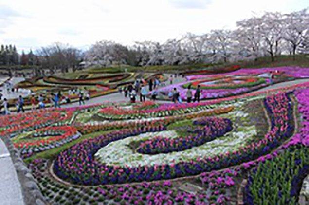 花のフェスティバル2020