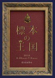 ranbu企画展「標本の王国」