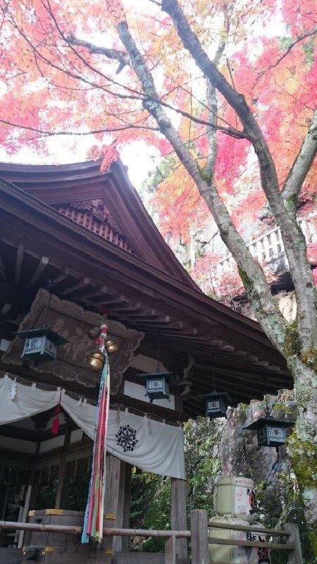 太郎坊宮の紅葉