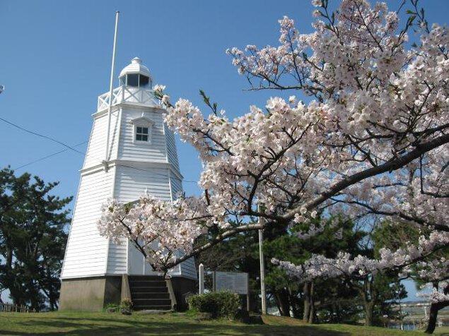 【桜・見ごろ】日和山公園