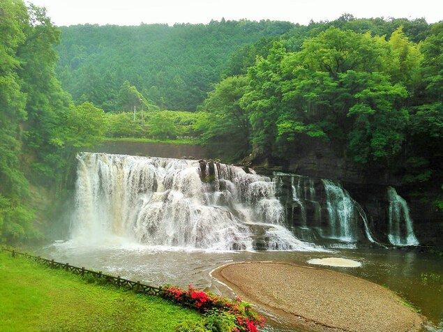 龍門の滝の桜