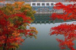 温井ダム周辺の紅葉