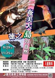 蔵出し博物館「奄美大島・徳之島の自然」