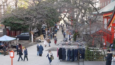 花園神社 青空骨董市