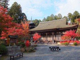 常楽寺(湖南三山)の紅葉